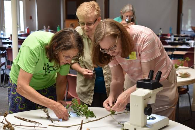 Participants in the Master Gardener Program attend classes learning basic horticultural principles and environmentally-sound gardening practices.