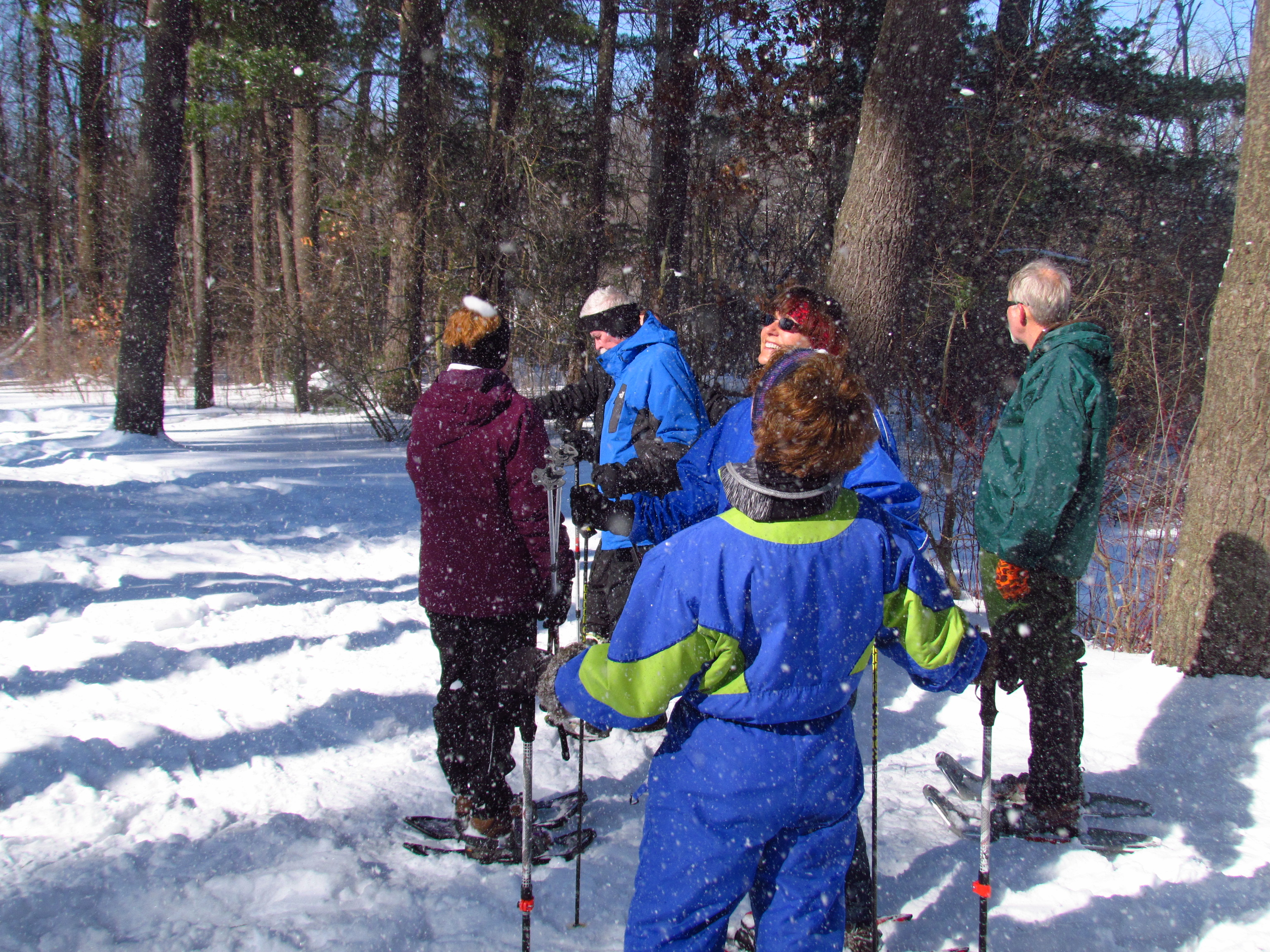 A group of snowshoers and cross-country skiers stand in the snowy forest