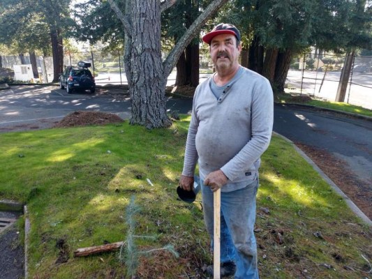 OUSD Gardener Tom O'Neill stands next to one of the trees he planted at Skyline High School.