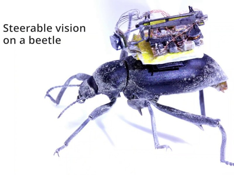Wireless Steerable Vision For Live Insects And Insect-Scale Robots