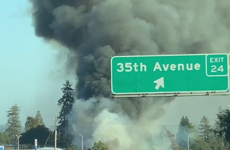 Oakland Brush Fire Off 35th Avenue I-580 Exit