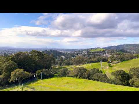 Beautiful Scenery | Gondola Ride | Oakland Zoo | Oakland, California