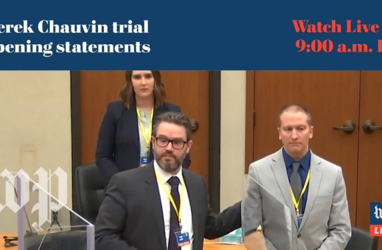WATCH LIVE | Prosecution calls first witnesses in Derek Chauvin trial