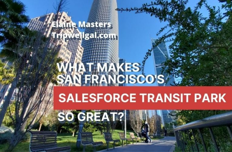 In Praise Of San Francisco's Salesforce Transit Center Built By Maria Ayerdi Kaplan