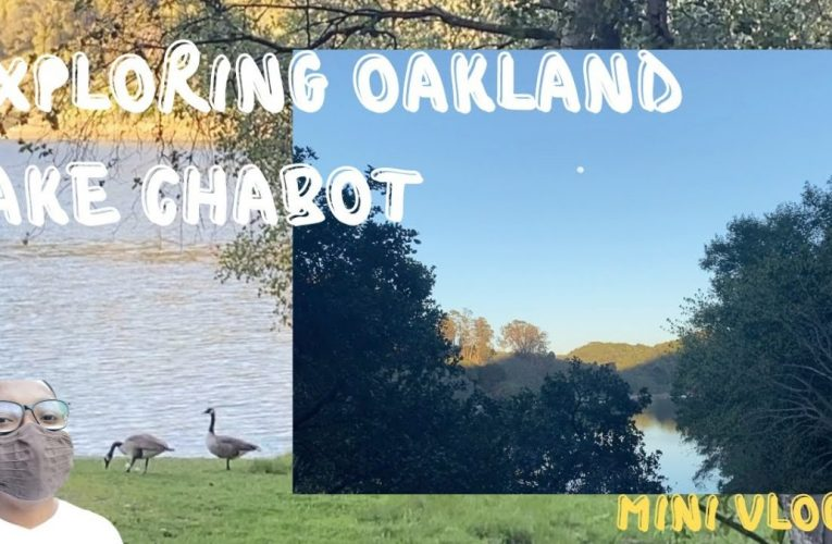 Exploring The Bay Area: Lake Chabot Park,  Oakland, California Vlog
