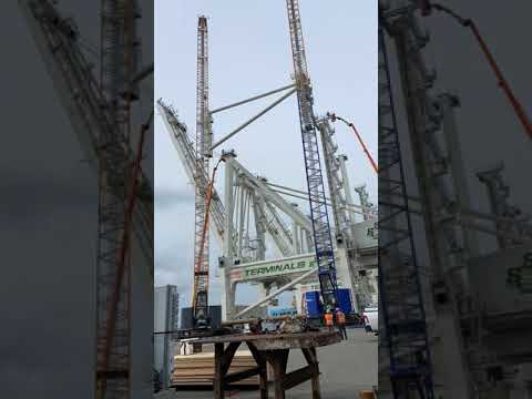 Container Crane Assembly (Time Lapse) – Oakland International Container Terminal