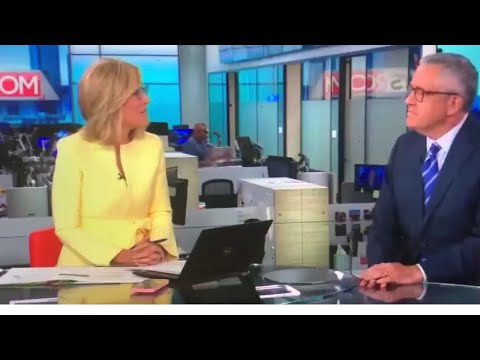 CNN Allysyn Camerota Blushes, Laughs, While Talking With Jeffrey Toobin About His ZOOM Call