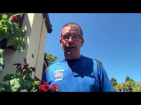 Councilmember Pete Ballew Asks San Leandro Residents To Fill Out City Community Survey