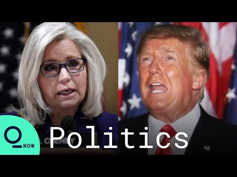Liz Cheney Suggests Trump Was 'Personally Involved' in Jan. 6 Capitol Riot
