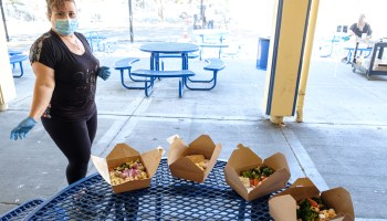 boxed lunches on a table