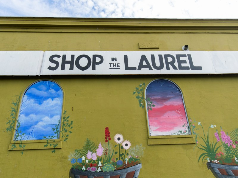 """Shop in the Laurel"" mural with text in bold and painted windows with foliage."