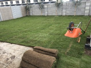 Grass sod laid co meath