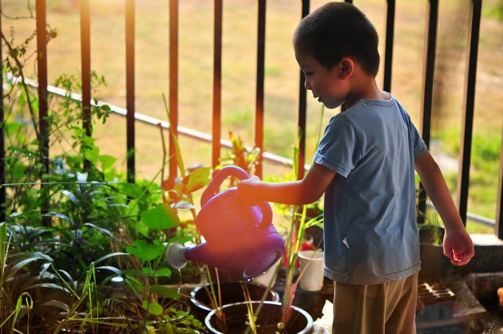 kid watering plants