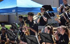 Performing arts on display at district-wide events