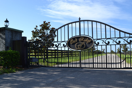 Oak Ridge Training Center for your racehorse