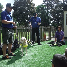 year-2-guide-dogs-5