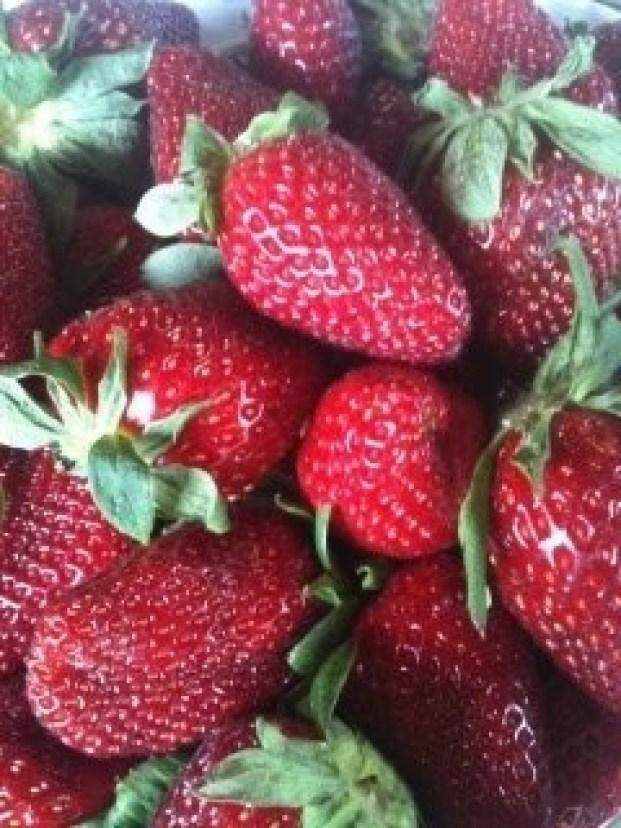 strawberries from Hayden!