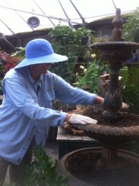 Kris, planting the fountain....