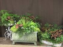 Planters for a Wedding