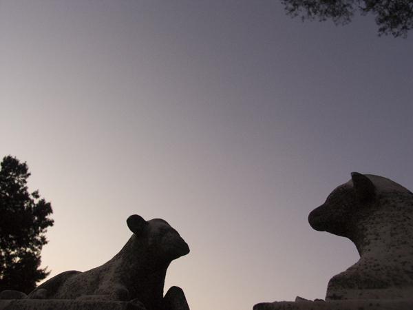Mountain View Cemetery Lambs