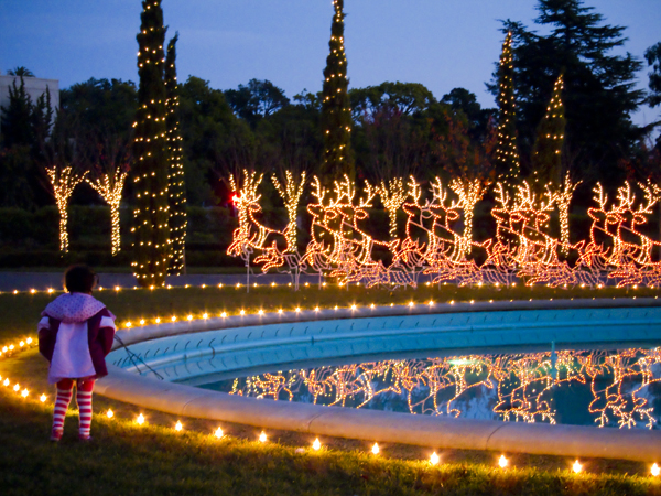 holiday lights, circle of lights, mountain view cemetery