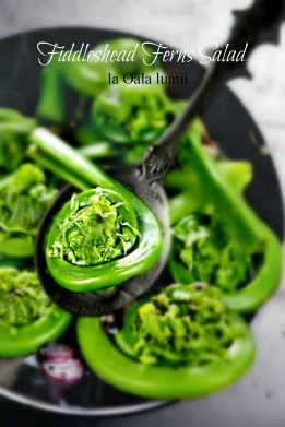 fiddlehead ferns salad