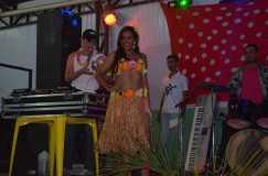 37_Baile do hawai_2013