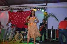 47_Baile do hawai_2013