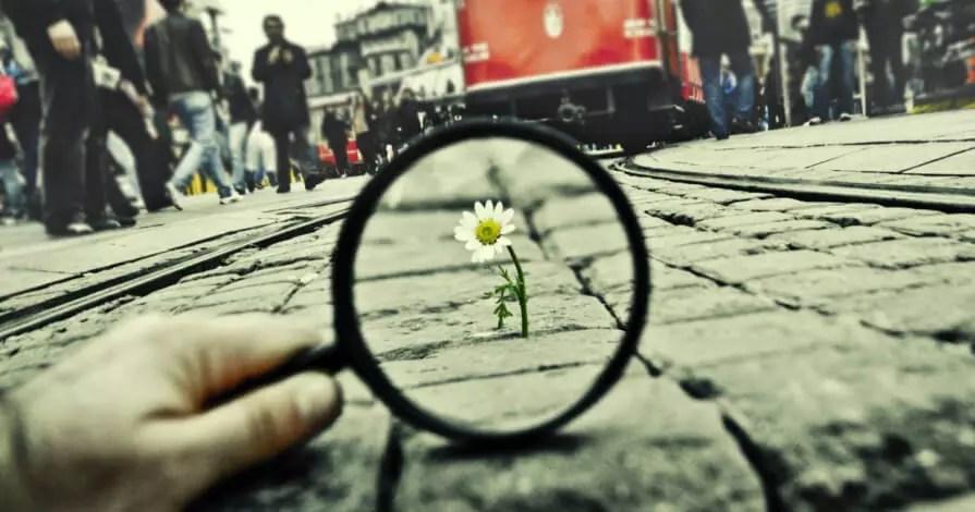 Em tom sépia, uma mão segurando uma lupa com foco em uma flor margarida crescendo entre pedras de uma avenida; ao fundo pessoas atravessando esta avenida
