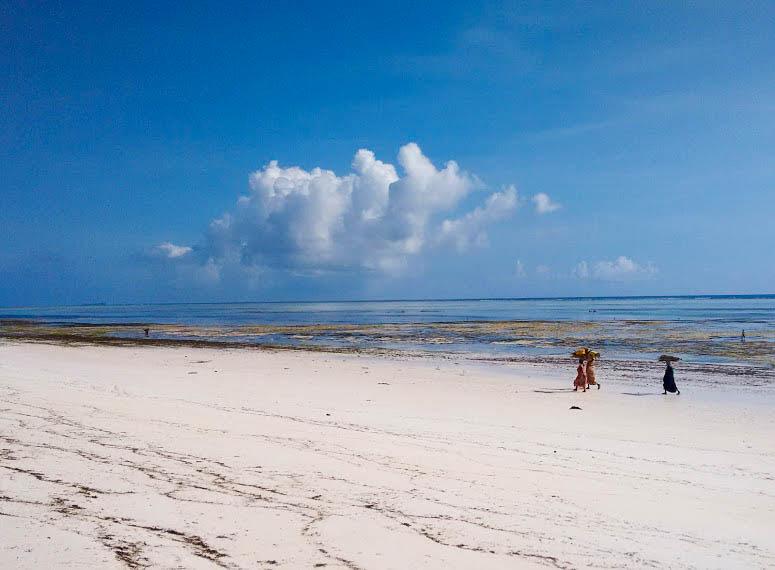 vacanta in Zanzibar, oanabotezatu.ro_6