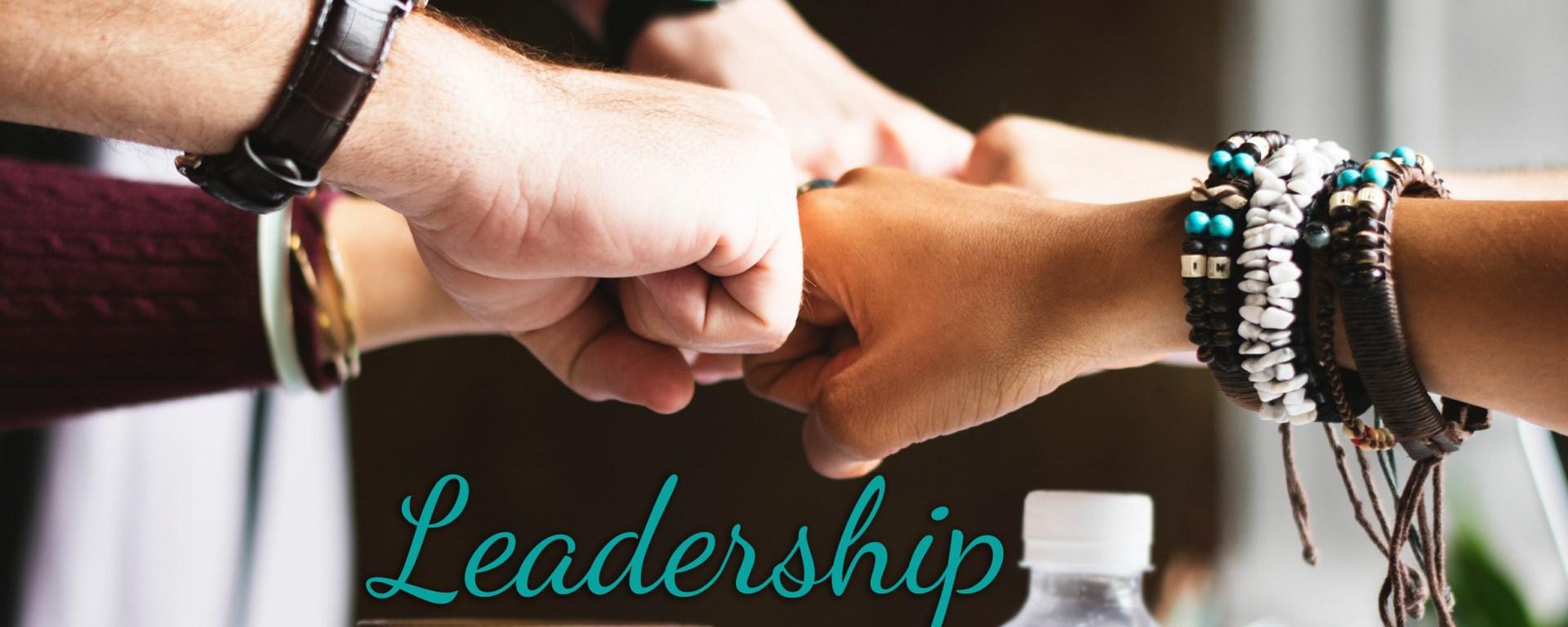 Leadership Fist Bump Oana Harrison Blog