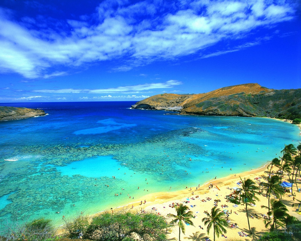 great-beach-hawaii-picture[1]