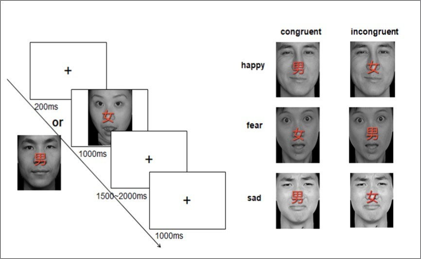 Cognitive Mechanism of Emotional Validity Influencing