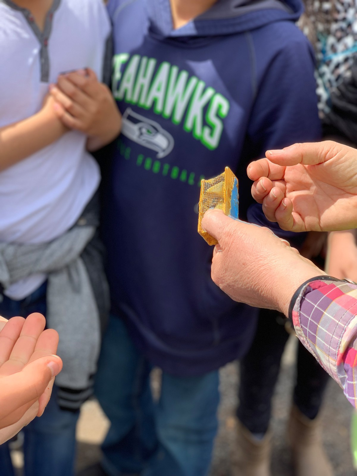 Heike Williams, an Oregon State University Extension honeybee specialist, shows students a queen bee at Seeds of Science