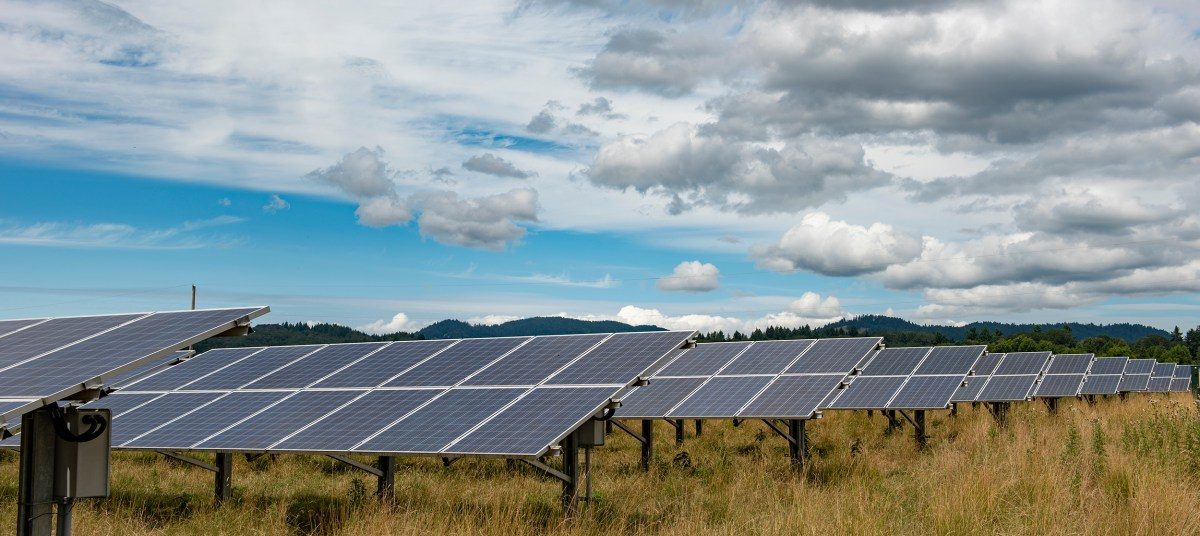 solar array installed in pasture