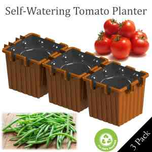 terracotta self-watering tomato planter