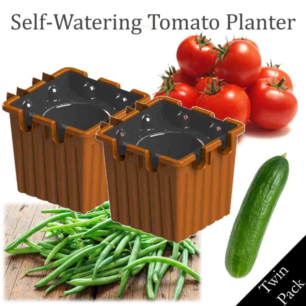 TERRACOTTA self-watering tomato planter