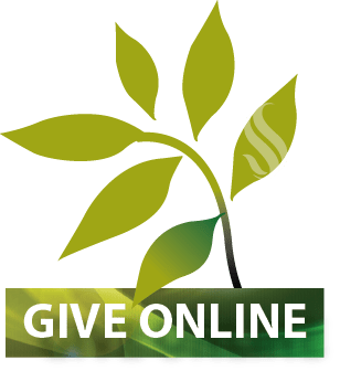 Online-Giving-icon