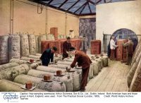 The Process of Hop Drying - Oast and Hop Kiln History