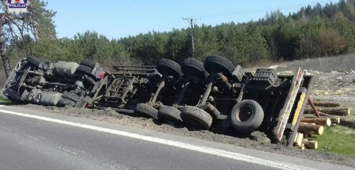Wypadek ciężarówki z drewnem – wszystko przez bąka.