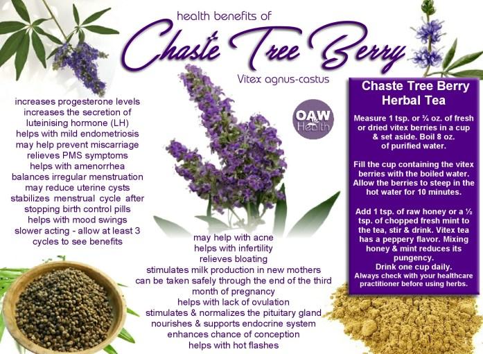 chaste tree berry health benefits