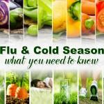 flu and cold season
