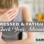 adrenal health - stress and adrenal fatigue