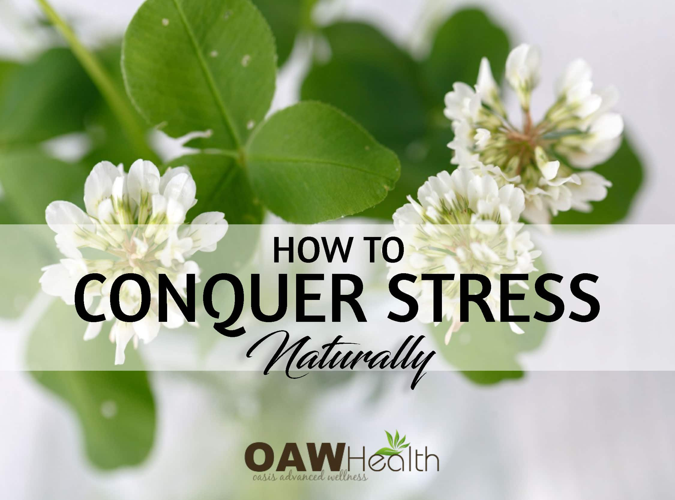 How to Conquer Stress Naturally