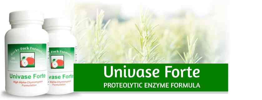 Univase Forte Proteolytic Enzymes banner