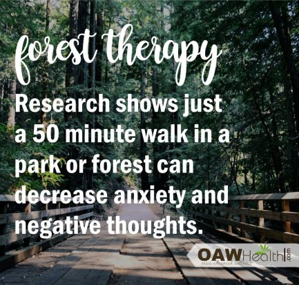 quote-forest therapy - oawhealth