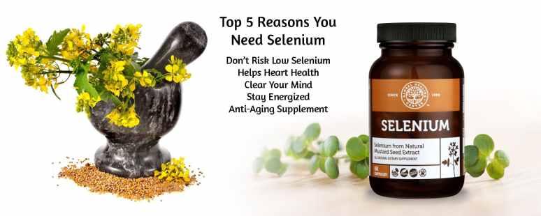 Reasons you need selenium