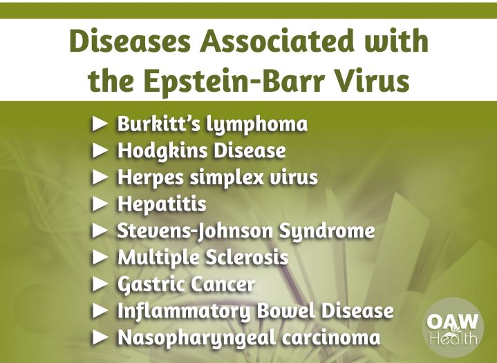 Diseases Associated with the Epstein-Barr Virus