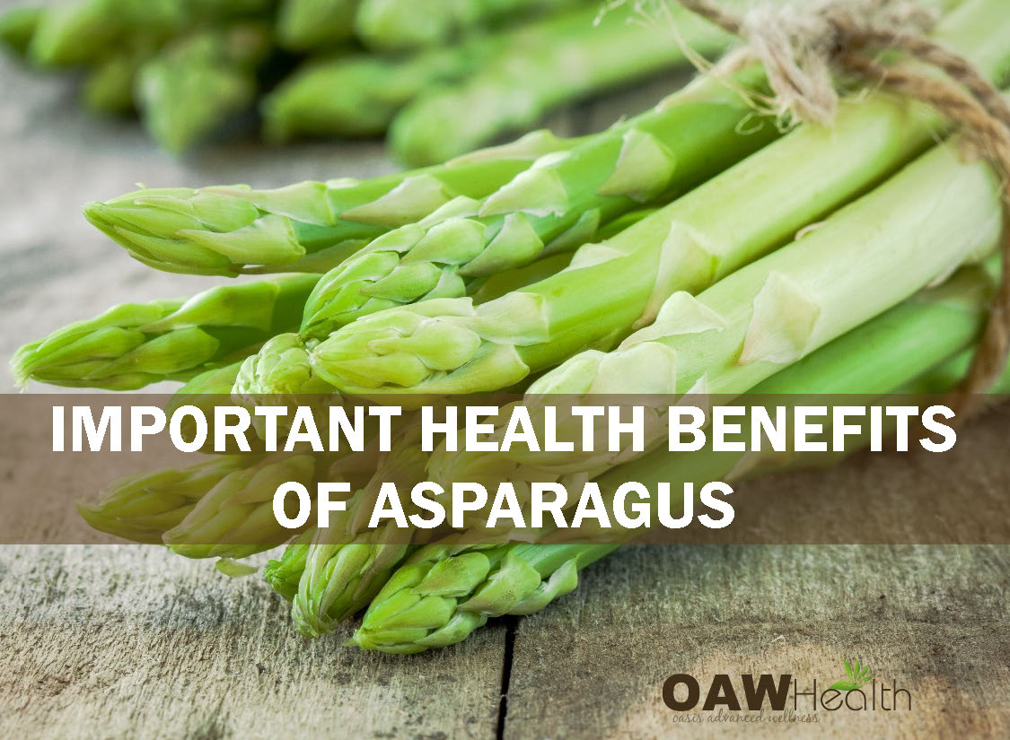 Important Health Benefits of Asparagus
