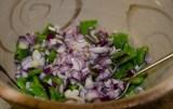 Nopal Cactus Salad-5